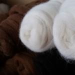 Alpaka Wollverarbeitung Preise